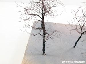Fusti alberi