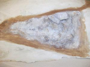 Coloritura rocce