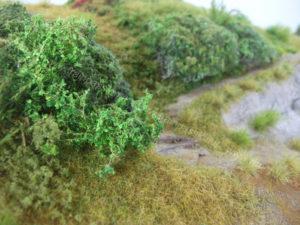 Dettaglio arbusti