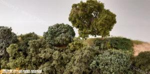 Dettaglio vegetazione